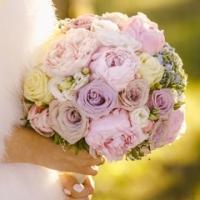 wed_www_1-4