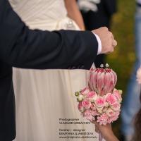wed_711-24